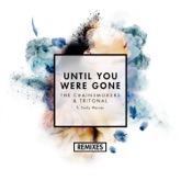 Until You Were Gone (feat. Emily Warren) [Remixes] - Single