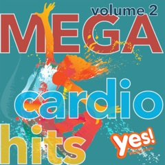 Mega Cardio Hits vol. 2 (Non-Stop Mix for Fitness and Workout @ 135BPM)