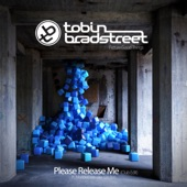 Please Release Me (feat. Marlous Van Der Linden) [Club Edit] artwork