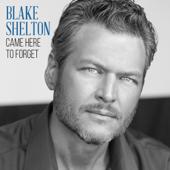 Came Here To Forget  Blake Shelton - Blake Shelton