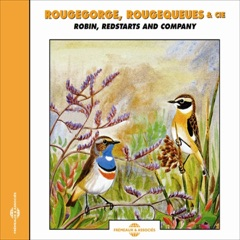 Rougegorge, Rougequeues - Robin, Redstarts & Co