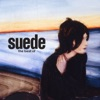 Buy The Best Of by Suede on iTunes (搖滾)