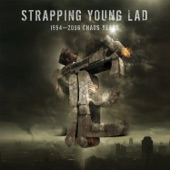 Strapping Young Lad - Love?