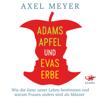 Adams Apfel und Evas Erbe: Wie die Gene unser Leben bestimmen und warum Frauen anders sind als Männer - Axel Meyer