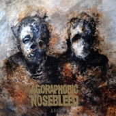 Agoraphobic Nosebleed - Not a Daughter