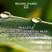 Relaxing Sounds 111: Peaceful Morning Instrumental Music for Stress Relief, Yoga Meditation, Healing Songs with Ocean and Birds