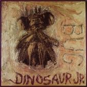 Dinosaur Jr. - Pond Song