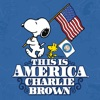 This Is America, Charlie Brown wiki, synopsis