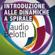 Claudio Belotti - Introduzione alle dinamiche a spirale