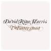 David Ryan Harris - Yesterday Shutting Down artwork