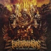 Birth Through Gore - ...To Shredded Flesh