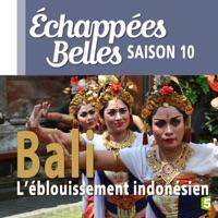 Télécharger Bali, l'éblouissement indonésien Episode 1