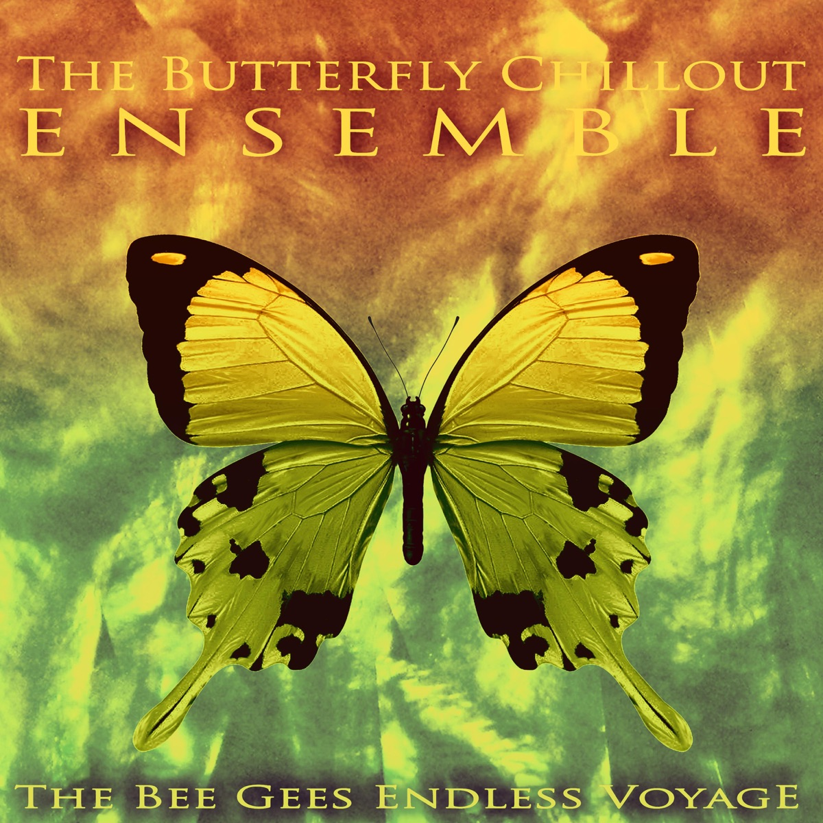 The Bee Gees Endless Voyage Album Cover by The Butterfly