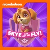 PAW Patrol, Skye Has Got to Fly! wiki, synopsis