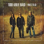 Todd Wolfe Band - Sunnyvale