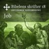 KABB - Job (Bibel2011 - Bibelens skrifter 18 - Det Gamle Testamentet) artwork