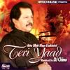 Teri Yaad feat DJ Chino