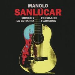 Mundo y Formas de la Guitarra Flamenca