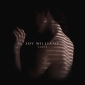 Joy Williams - You Loved Me (Album Version)