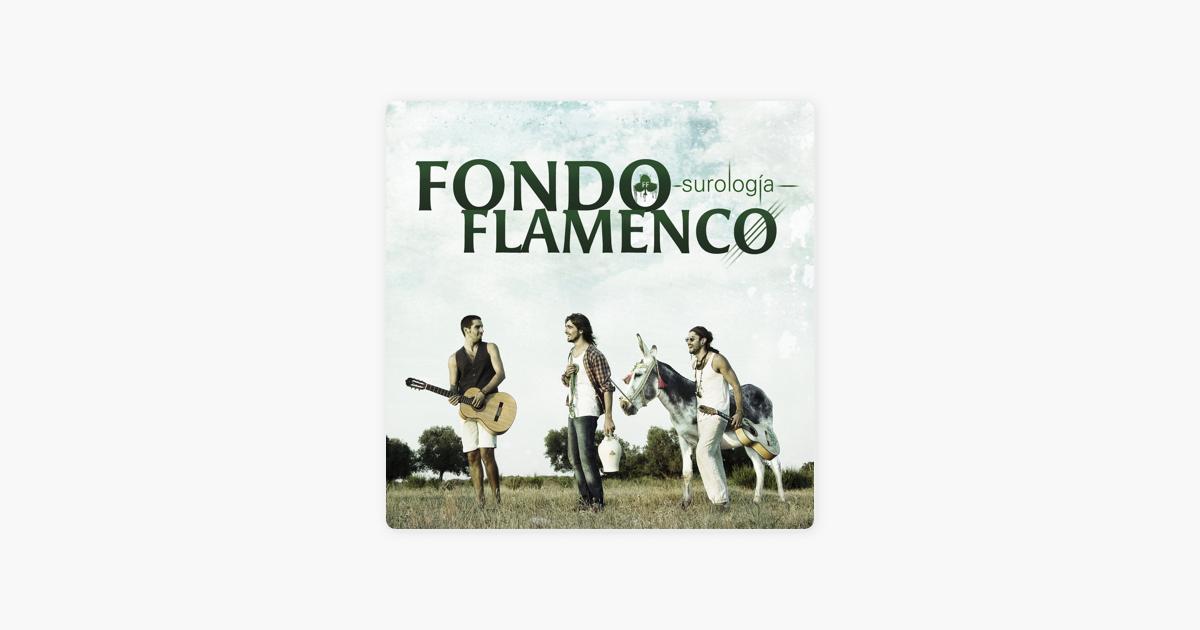 disco surologia fondo flamenco 2012
