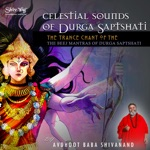 Download Avdhoot Baba Shivanand CD Covers | Album CD Cover