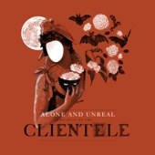 The Clientele - We Could Walk Together