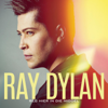 Ray Dylan - In Lewende Lywe artwork