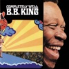 Completely Well, B.B. King