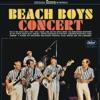 Beach Boys Concert Live