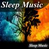 Sleep Music - Sleep Music