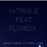 What Does It Feel Like (feat. Flo Rida) [Remixes] - Single
