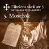 KABB - 5. Mosebok (Bibel2011 - Bibelens skrifter 5 - Det Gamle Testamentet) artwork