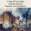 Charles Dickens - A Tale of Two Cities (Unabridged)  artwork