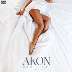 Akon - Want Some feat. DJ Chose