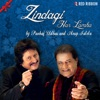 Zindagi Har Lamha - Single, Pankaj Udhas & Anup Jalota