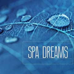 Spa Dreams - Music for Spa Breaks, Wellness Centers and Massage Background Songs