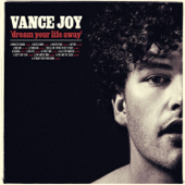 Fire And The Flood  Vance Joy - Vance Joy