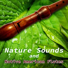 Nature Sounds and Native American Flutes – Relaxing Sounds of Water, Rain, Birds Singing for Massage, Yoga Classes, Spas & Wellness, Deep Sleep