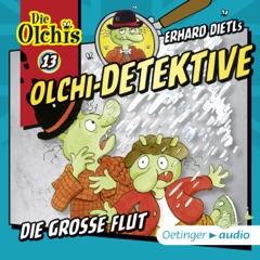 Die große Flut: Die Olchi-Detektive 13