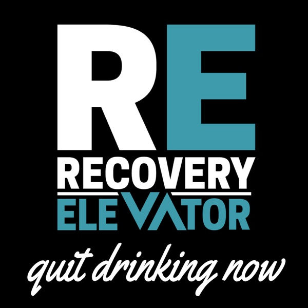 e5696d41c28 Recovery Elevator | Stop Drinking, Start Recovering. | Alcohol ...