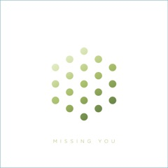 Missing You (feat. Tyler Daley & DRS)