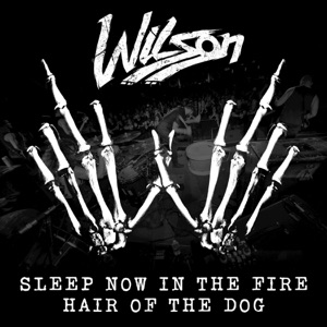 Sleep Now In the Fire / Hair of the Dog - Single Mp3 Download