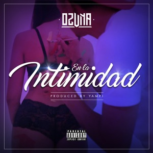En la Intimidad - Single Mp3 Download