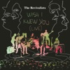Wish I Knew You (Live) - Single, The Revivalists