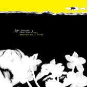Hope Sandoval & The Warm Inventions - Clear Day