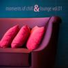 Moments of Chill & Lounge, Vol. 01 - Verschillende artiesten