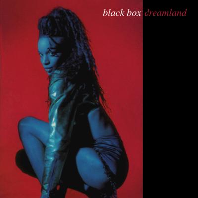 Everybody Everybody - Black Box song
