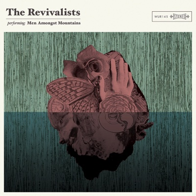 Wish I Knew You - The Revivalists song