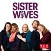 Sister Wives, Season 11 wiki, synopsis