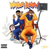 Wanna Know (Remix) [feat. Drake] - Single Mp3 Download
